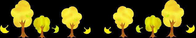 イチョウの木の画像